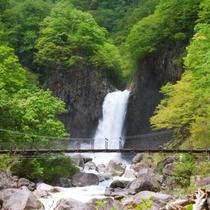 「日本の滝百選」にも選ばれている苗名滝。雪解けの水で水量が増し、迫力のある音がとどろきます。