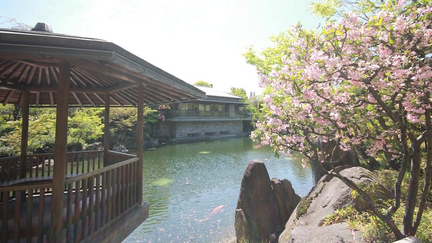 【観光】目白庭園