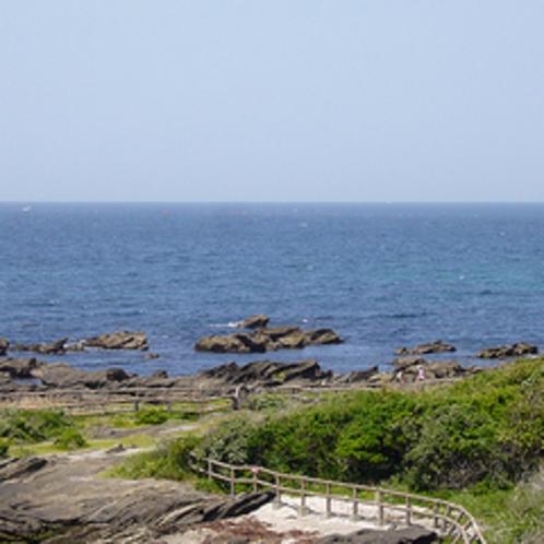 マリーナからみ見える海
