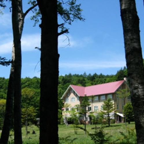 木立ちから望むホテル