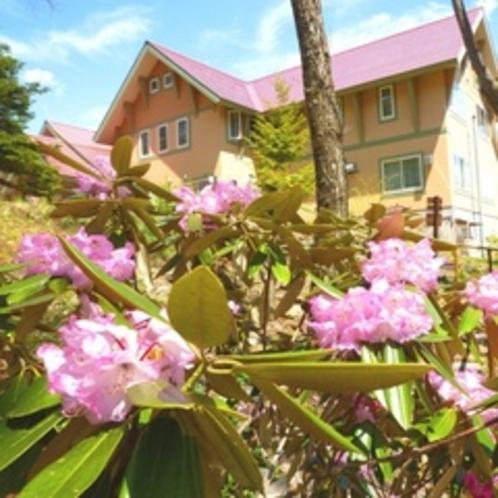 石楠花からの外観