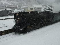 2010.12.15 SLD51 1