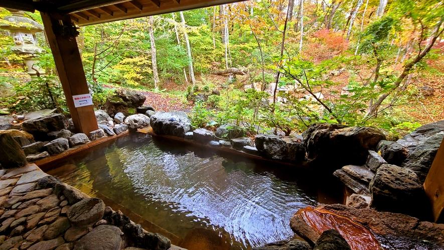 【かじかの湯】古代ブナの原生林に囲まれた露天風呂。秋は色とりどりの紅葉を楽しみながら…