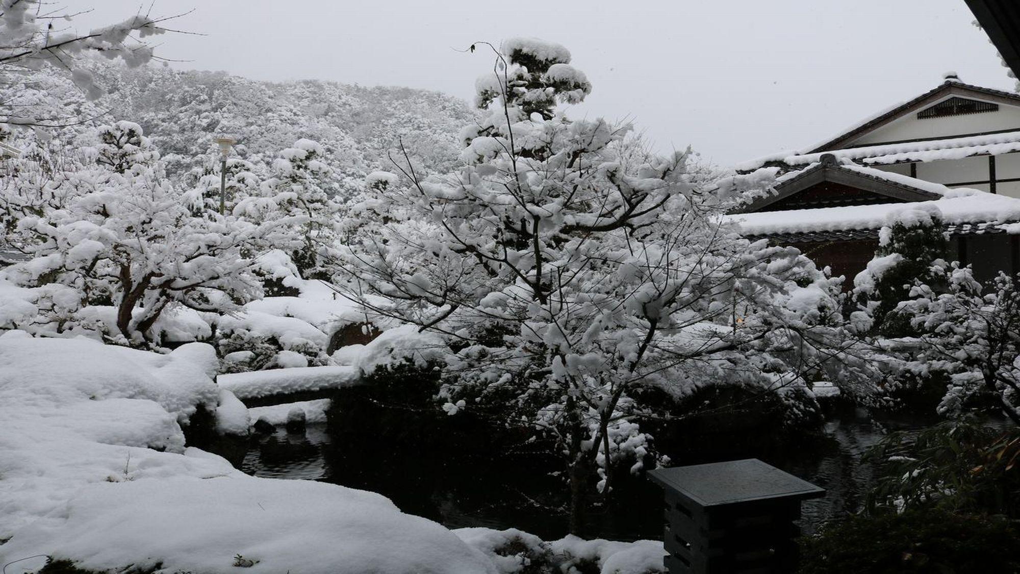 【日本庭園】ロビーからの景色〜冬〜