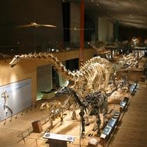 大型博物館「いのちのたび博物館」