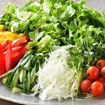 サラダはドレッシングも豊富に取り揃えています。