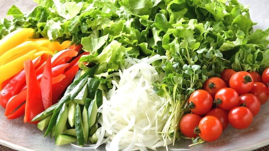 【朝食】サラダはドレッシングも豊富に取り揃えています。