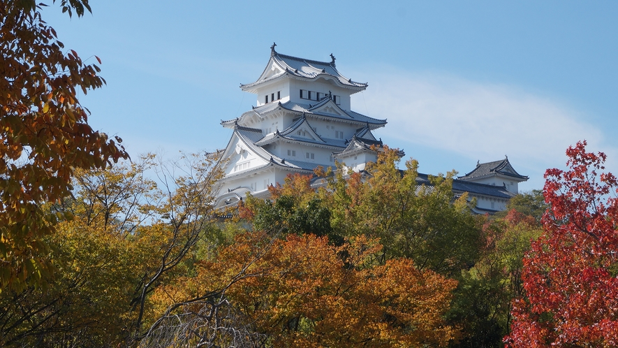 秋の紅葉の中の姫路城