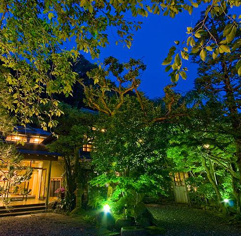 庭先の夜景