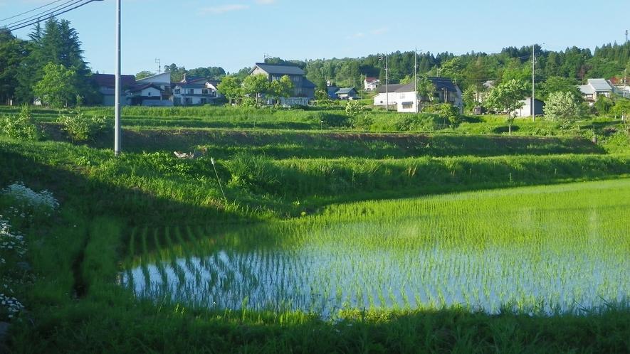 *【戸狩風景】美しい田園の景色が懐かしい。