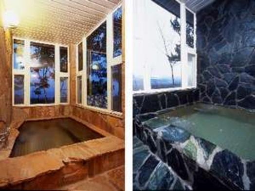 【スタンダードルーム(2〜4名で)】シックで落ち着いた雰囲気の部屋♪絶品仏料理ディナー&貸切展望風呂