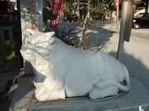 【稲積神社】