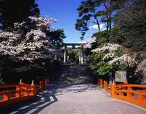 【武田神社】