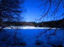 大峰沼の冬