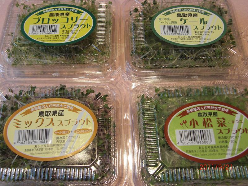 機能野菜スプラウト(洋朝食)