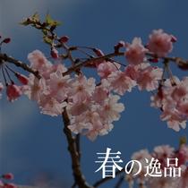 ◆春の逸品◆