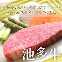 富山のご当地ブランドビーフ・池田牛のヒレステーキ会席♪