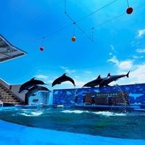 ★仙台うみの杜水族館に遊びに行こう!