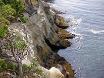 新浜岬から下を見る