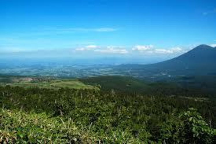 八幡平 岩手・秋田両県にまたがる、高原状のアスピーテ型火山台地。頂上まで約30分。