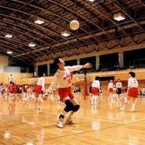 千代田運動公園«総合体育館»