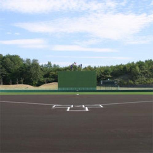 千代田運動公園«野球場»