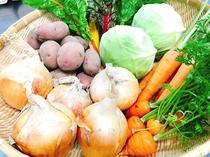 北広島町の新鮮野菜で楽しいBBQ♪
