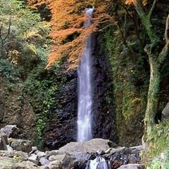 養老の滝まで約20分。四季折々の景色が楽しめますよ♪