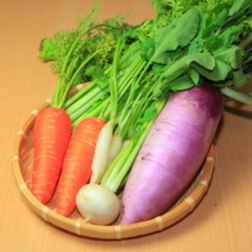 高原野菜01