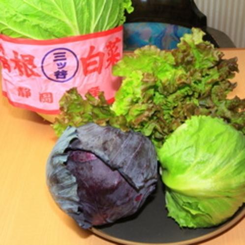 高原野菜02