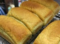 日替わり手作りパン