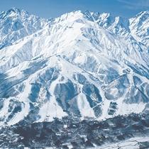 *【周辺観光_白馬八方尾根スキー場】北アルプスの大パノラマが目の前に!パウダースノーが自慢◎