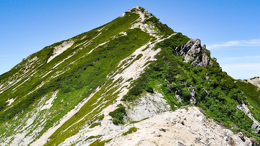 **【周辺観光_五竜岳】日本百名山の一つでもある五竜岳は、豪快で荒々しい岩稜の山です。
