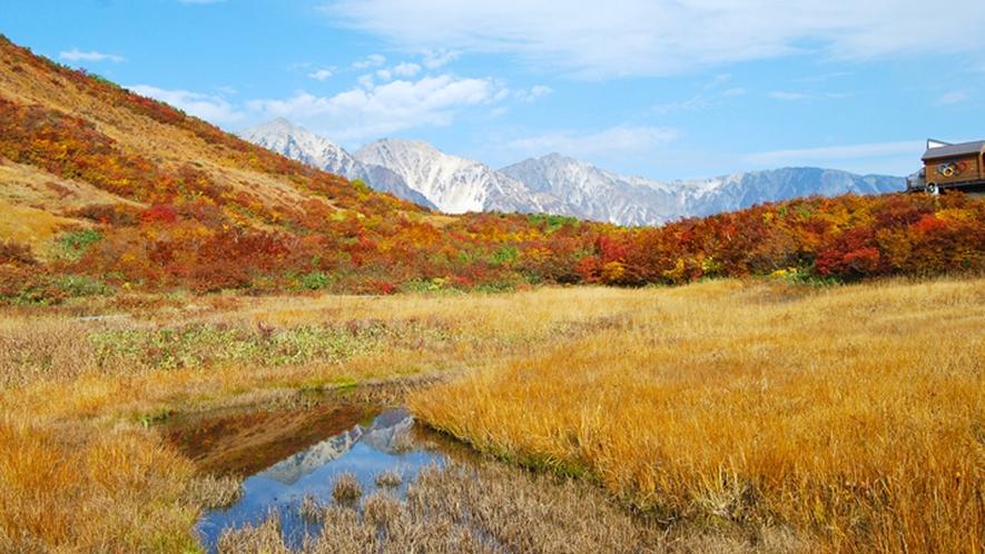 **【周辺観光】八方池の水面に白馬連峰の山々が映りとても神秘的な光景に出会えます。
