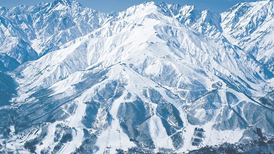 **【周辺観光_白馬八方尾根スキー場】北アルプスの大パノラマが目の前に!パウダースノーが自慢◎