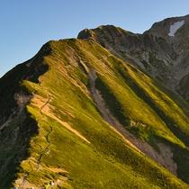 *【周辺観光_五竜岳】日本百名山の一つでもある五竜岳は、豪快で荒々しい岩稜の山です。