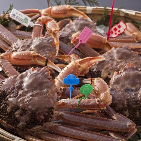 タグ付きブランド活蟹