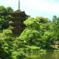 観光(山口市): 国宝瑠璃光寺五重塔