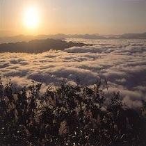 来日岳から見る雲海