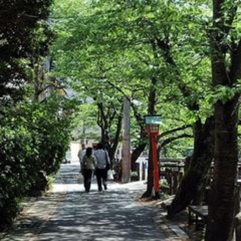 木屋町通の風景