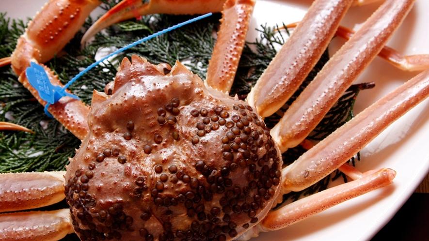 タグ付き活蟹をお腹いっぱいご賞味ください。