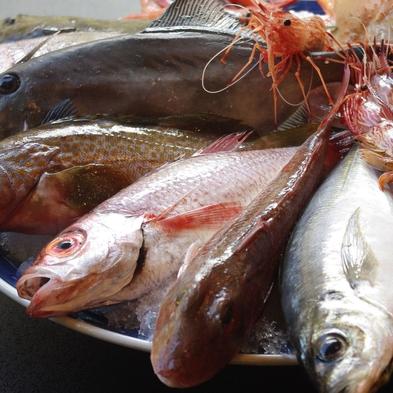 【スタンダードプラン×お刺身スペシャル】お刺身ボリュームアップ!きときと鮮魚を大皿盛りで 旬魚食通