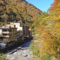 小川上流からの遠景<紅葉>