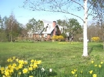 春の花の郷