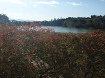 客室からの風景 秋
