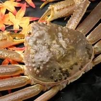 冬の味覚の王様「松葉蟹」