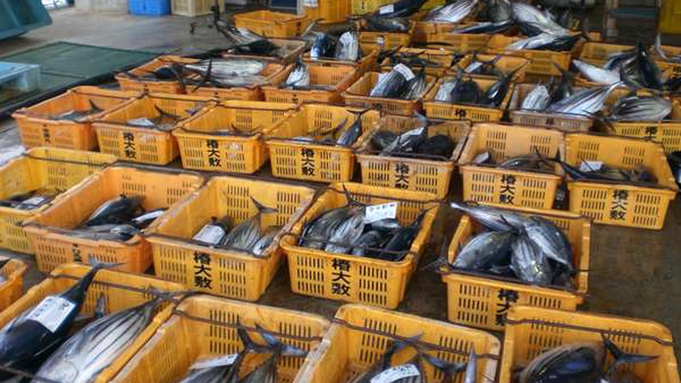 【新鮮★地魚プラン】お造りや海鮮鍋!人気の絶品釜飯も♪海の幸づくし(2食付/食堂食)