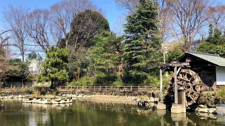 〇鍋島松濤公園
