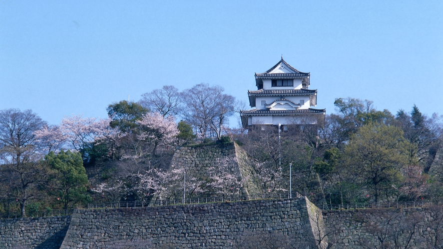 【観光】丸亀城