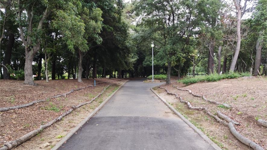 緑地帯歩道